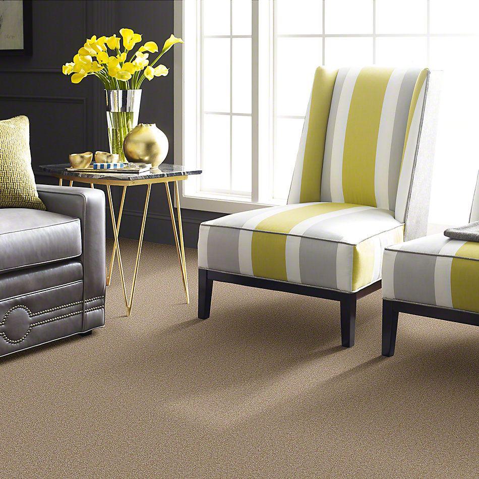 Shaw Floors Magic At Last I 15′ Cardboard 00245_E0234