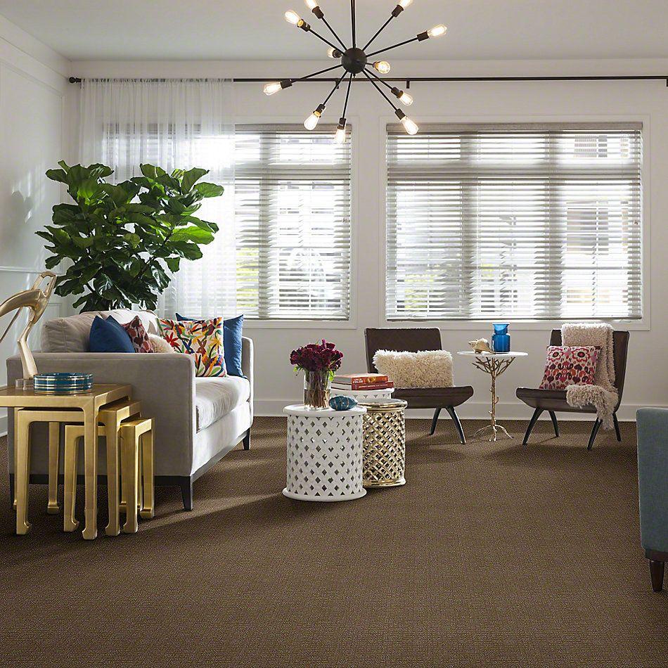 Anderson Tuftex American Home Fashions Square Biz Mushroom 00257_ZZA24