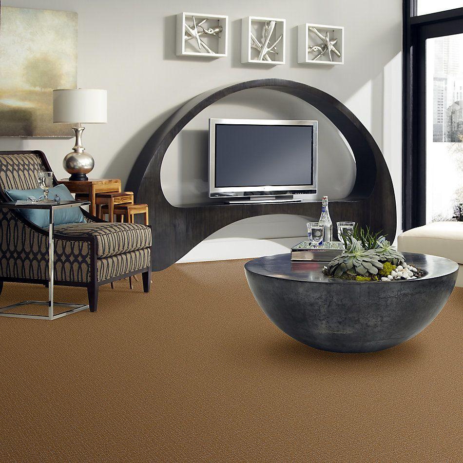 Anderson Tuftex Creative Elegance (floors To Go) Heartfelt Dream Amber 00270_958AF