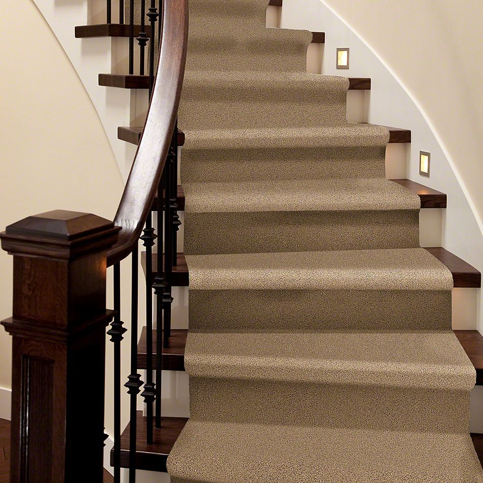 Shaw Floors Elemental Mix II Bridle Leather 00270_E9565