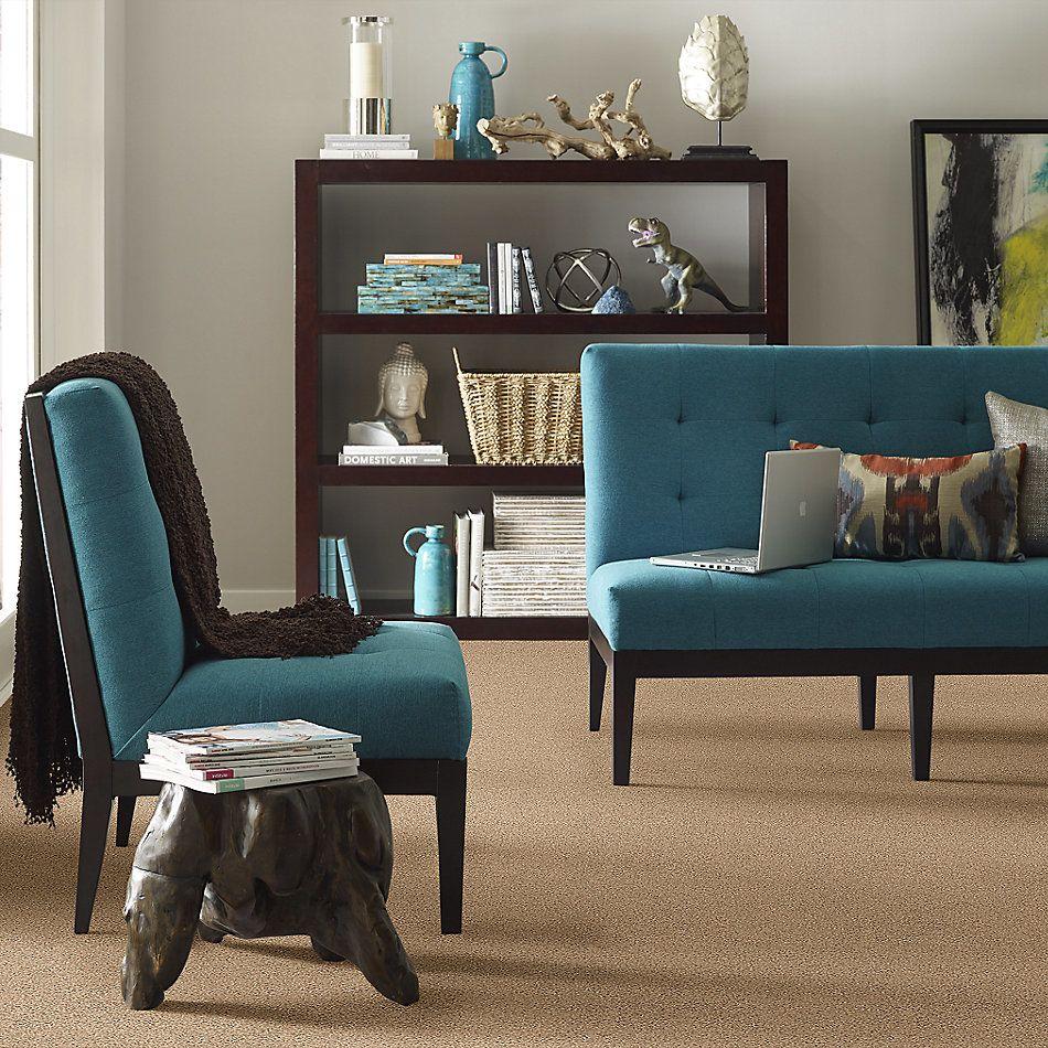 Shaw Floors Foundations Elemental Mix I Net Bridle Leather 00270_E9677