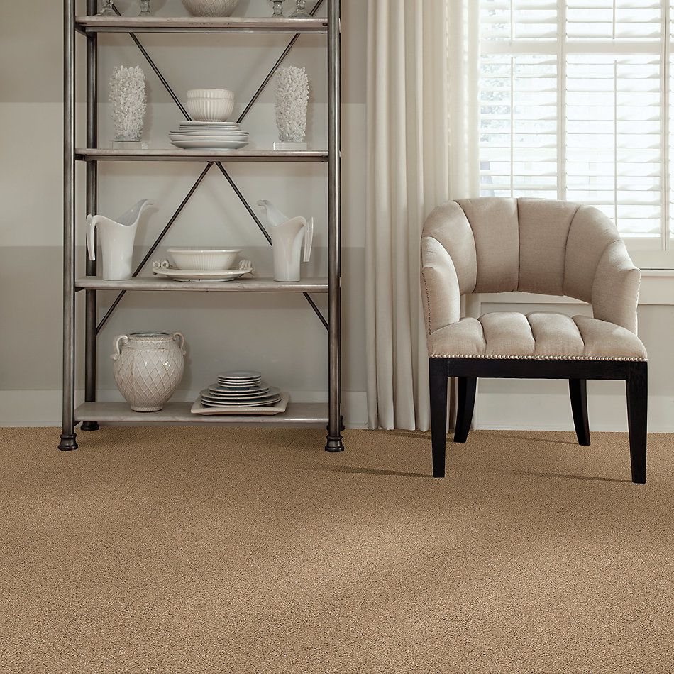 Shaw Floors Foundations Elemental Mix III Net Bridle Leather 00270_E9679