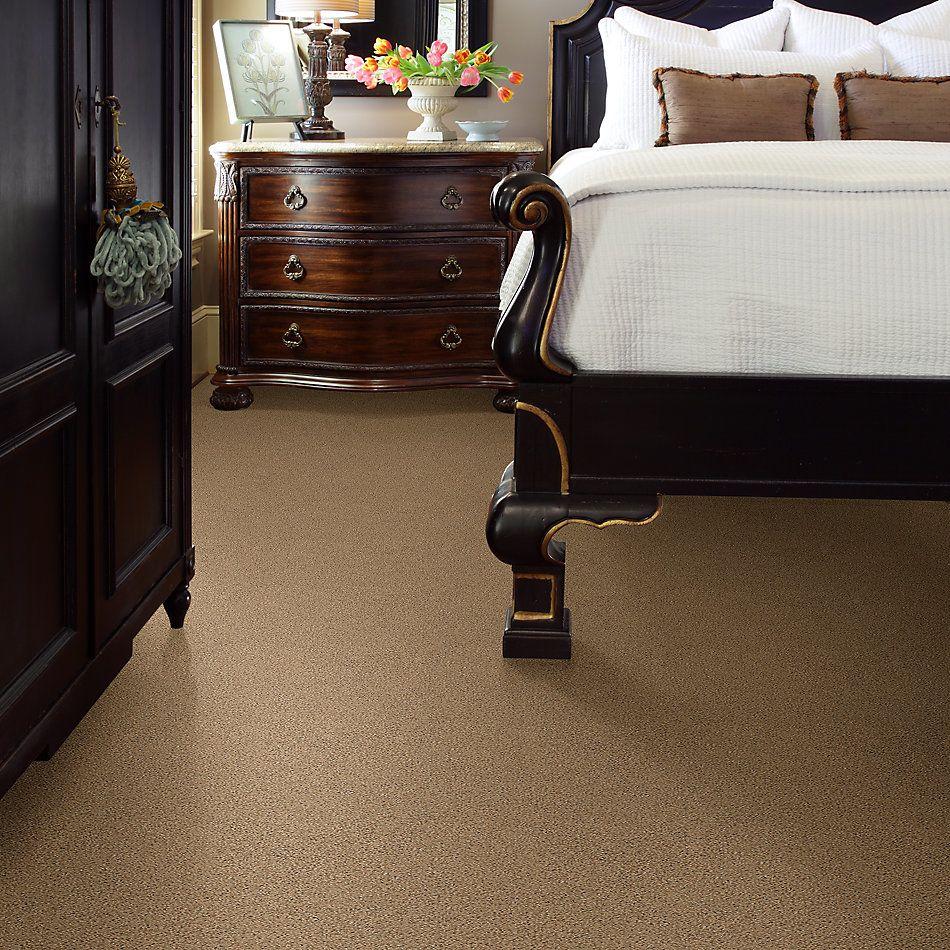 Shaw Floors SFA Nature Path Bridle Leather 00270_EA772