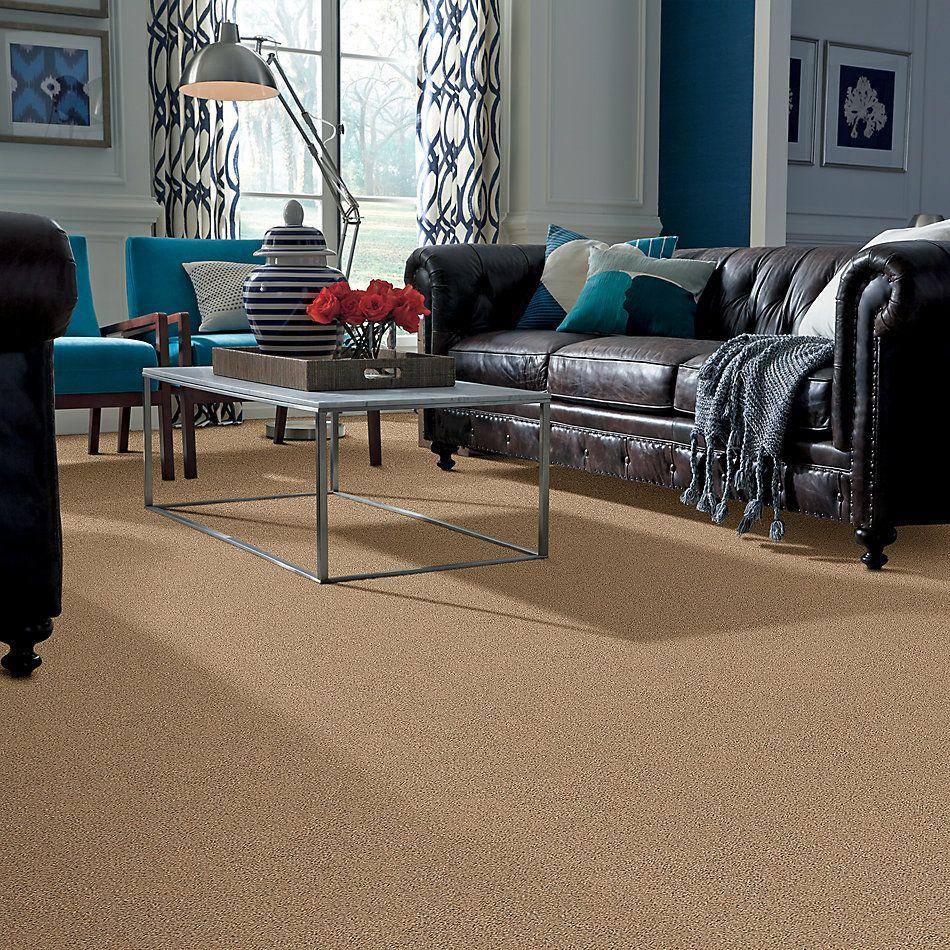 Shaw Floors Nfa/Apg Vigorous Mix II Bridle Leather 00270_NA170