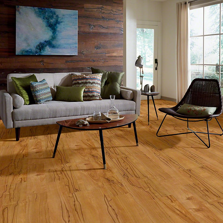 Shaw Floors SFA Reflections Gobi 00274_SA510