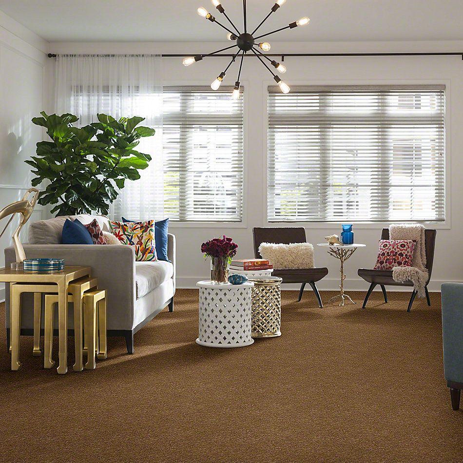 Anderson Tuftex American Home Fashions My Wonderland Cedar Chest 00276_ZA866