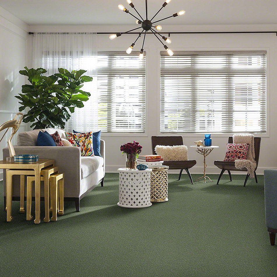 Shaw Floors SFA Vivid Colors III Sweet Grass 00300_0C162
