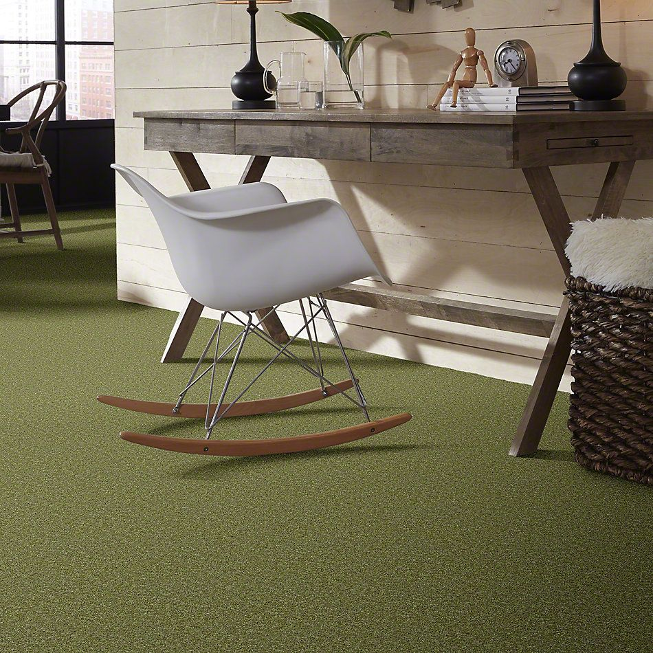 Shaw Floors Shaw Flooring Gallery Burtonville Kiwi 00300_5293G