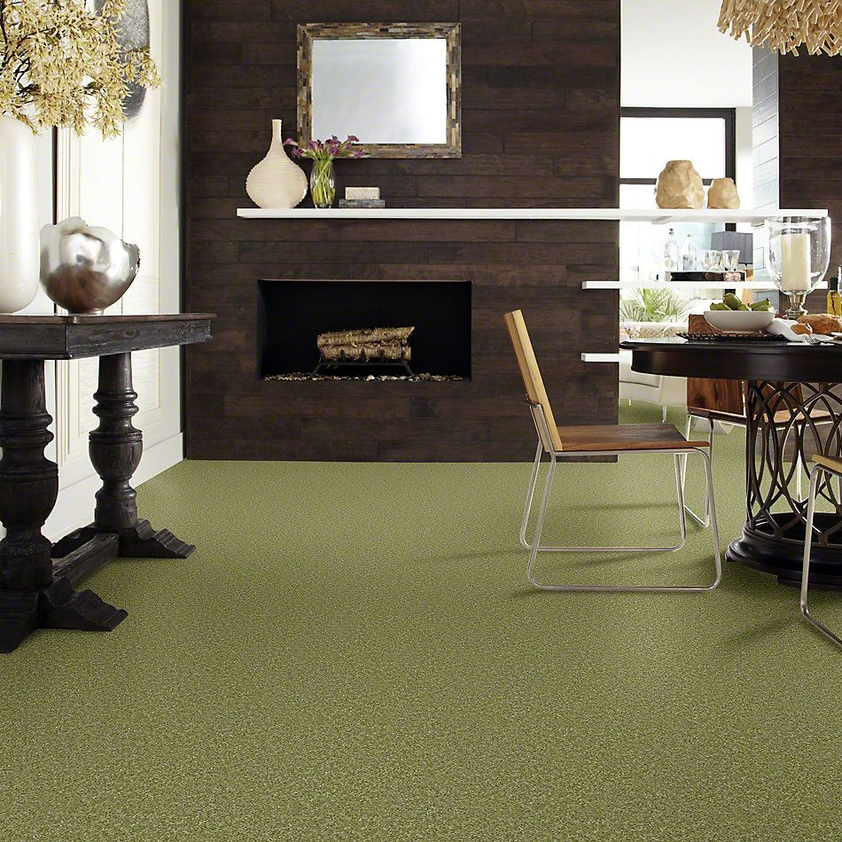 Shaw Floors Shaw Flooring Gallery Colesville 12′ Spring Valley 00300_5294G
