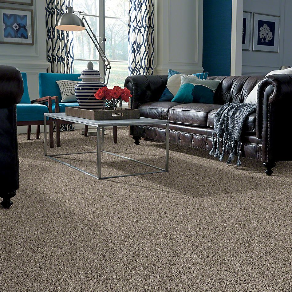 Shaw Floors Guess Work (s) River Moss 00300_52T99
