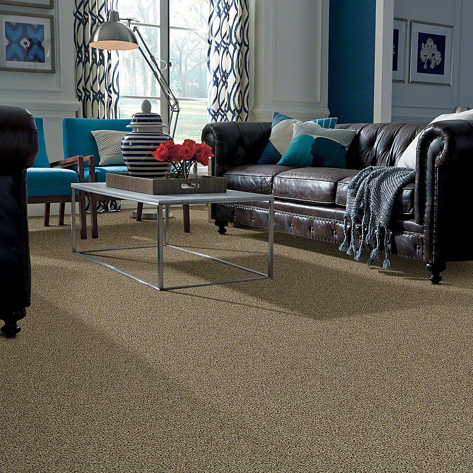 Shaw Floors Northern Parkway Spring Leaf 00300_52V34