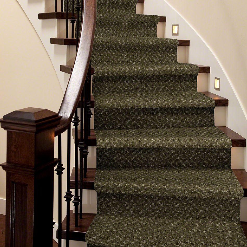Shaw Floors SFA Westbourne Organic Leaf 00300_52V44