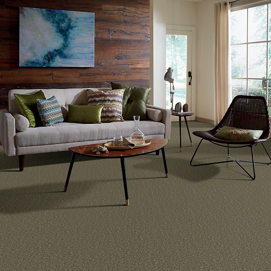Shaw Floors Full Court 12′ Aloe 00300_52Y46