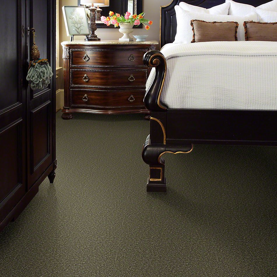 Shaw Floors Shaw Flooring Gallery Ellendale 15′ Aloe 00300_5301G