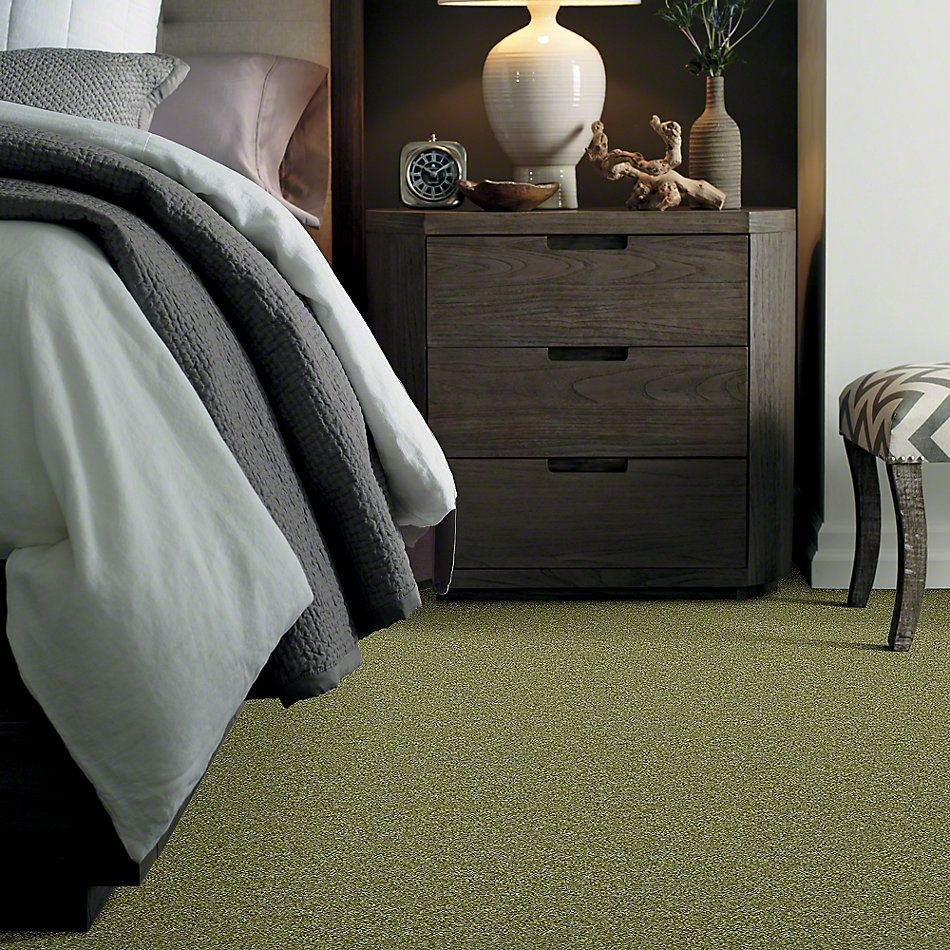 Shaw Floors Shaw Flooring Gallery Colesville 15′ Spring Valley 00300_5309G