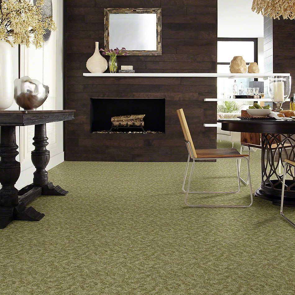 Shaw Floors Shaw Flooring Gallery Starting Out Sea Glass 00300_5509G