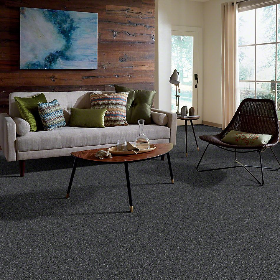Shaw Floors Shaw Flooring Gallery Lucky You Seacliff Heights 00300_5574G