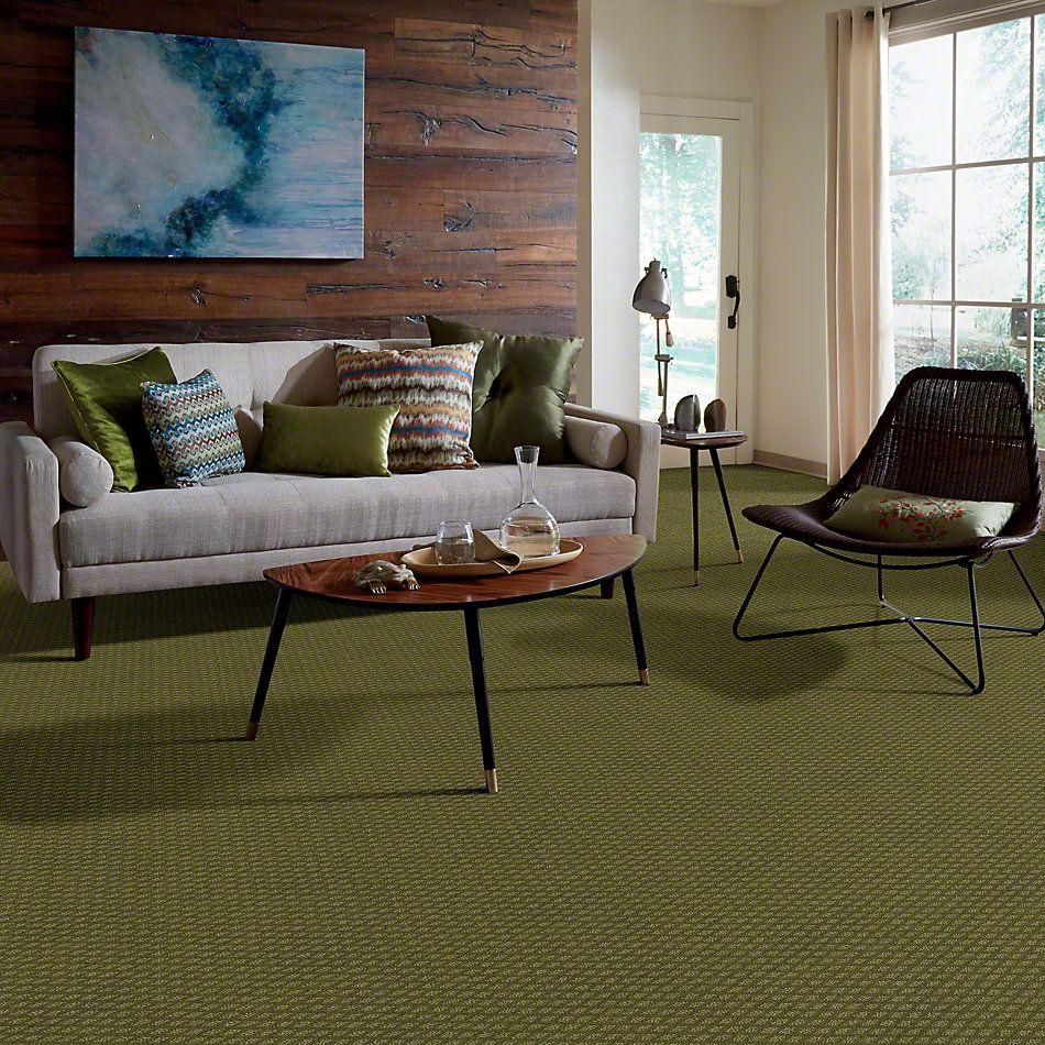 Shaw Floors Shaw Design Center Townelake Organic Leaf 00300_5C553