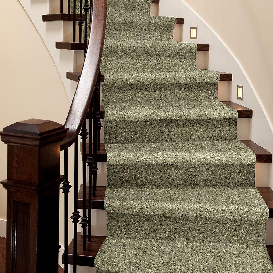 Shaw Floors Shaw Design Center Wild Pitch Kiwi 00300_5C633