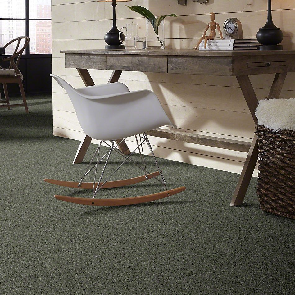 Shaw Floors Shaw Design Center Beautifully Simple II 12 Spring Leaf 00300_5C747