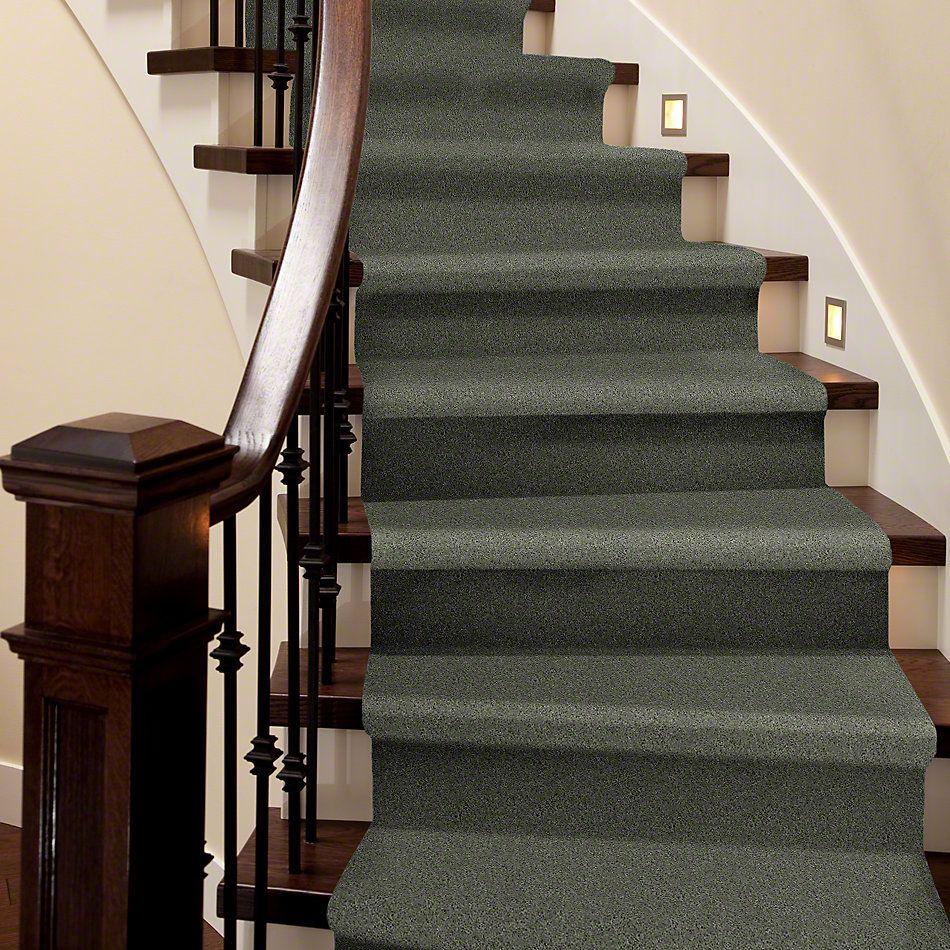 Shaw Floors Shaw Design Center Beautifully Simple II 15′ Spring Leaf 00300_5C752