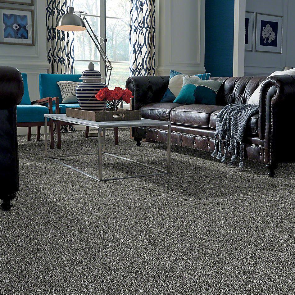 Shaw Floors Simply The Best Hypnotic Iced Jade E9347_00300