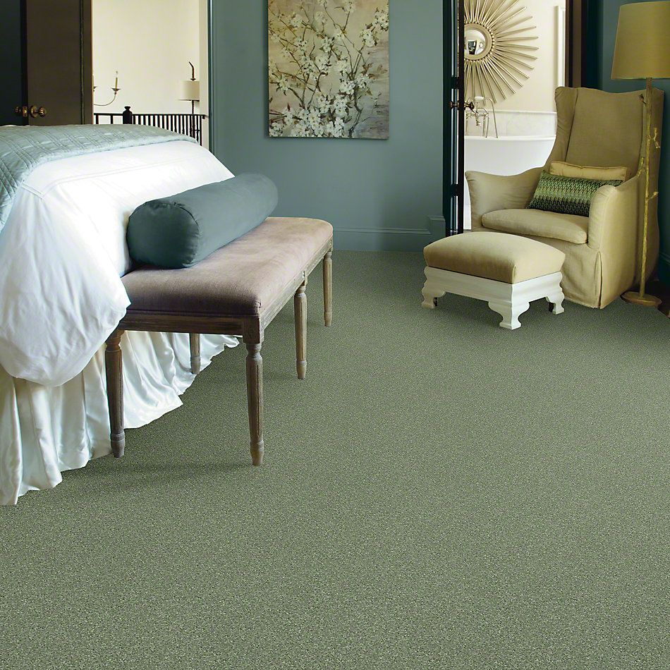 Shaw Floors Clearly Chic Bright Idea I Sweet Grass 00300_E0504