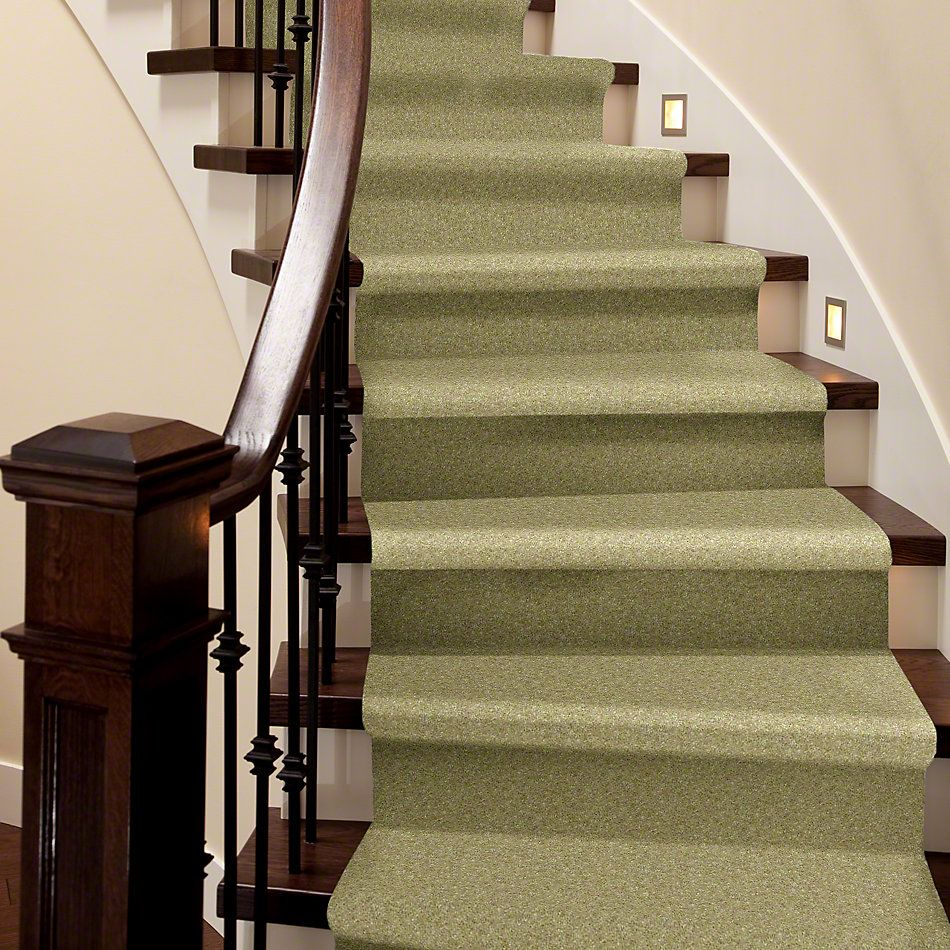 Shaw Floors To The Max Spring Green 00300_E0565