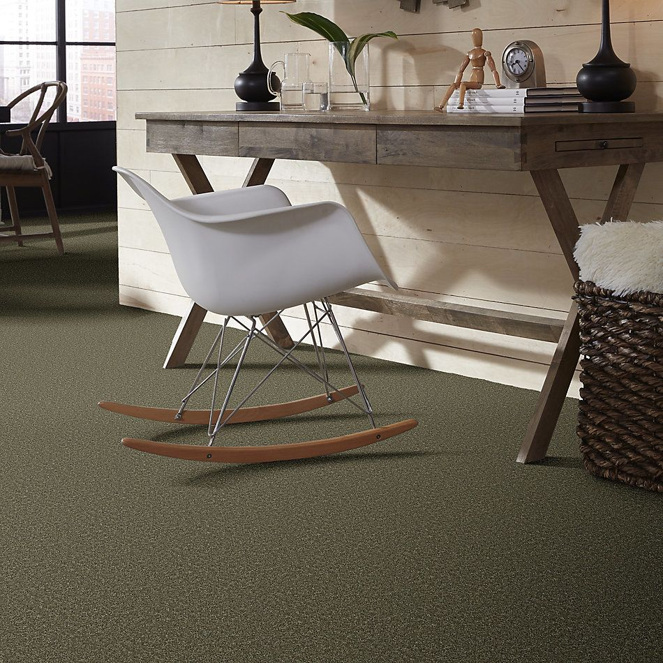 Shaw Floors Value Collections Full Court Net Aloe 00300_E0713