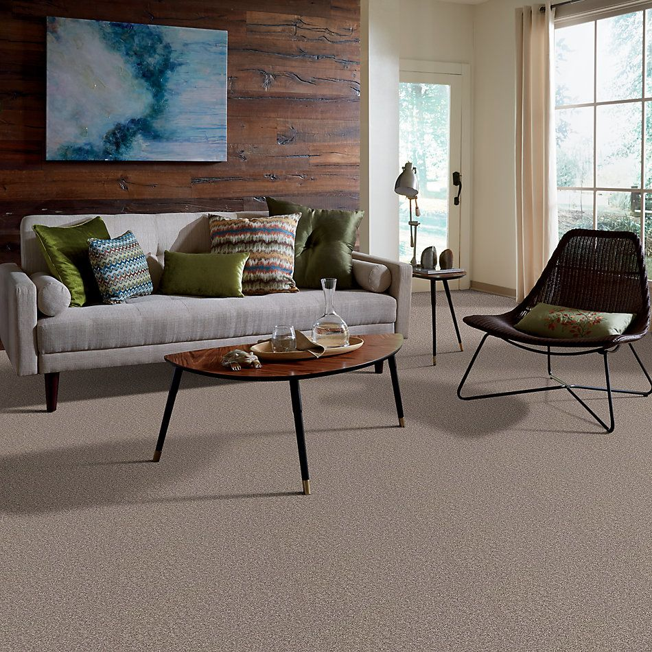 Shaw Floors Value Collections All Star Weekend I 12 Net Aloe 00300_E0792