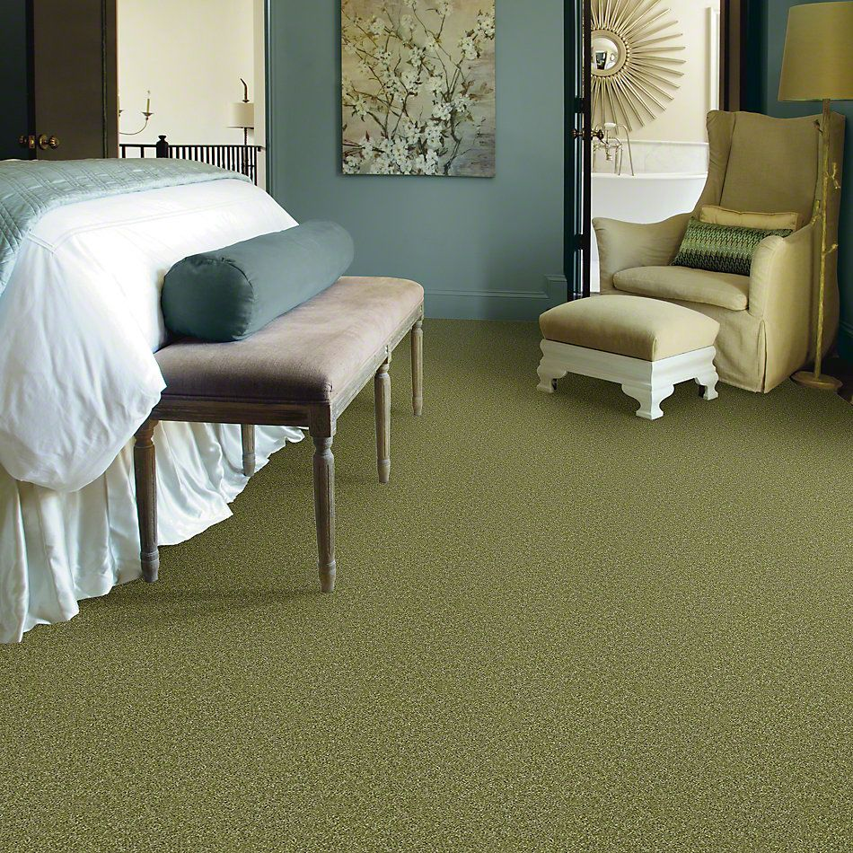Shaw Floors Make It Yours (s) Spring Valley 00300_E0819