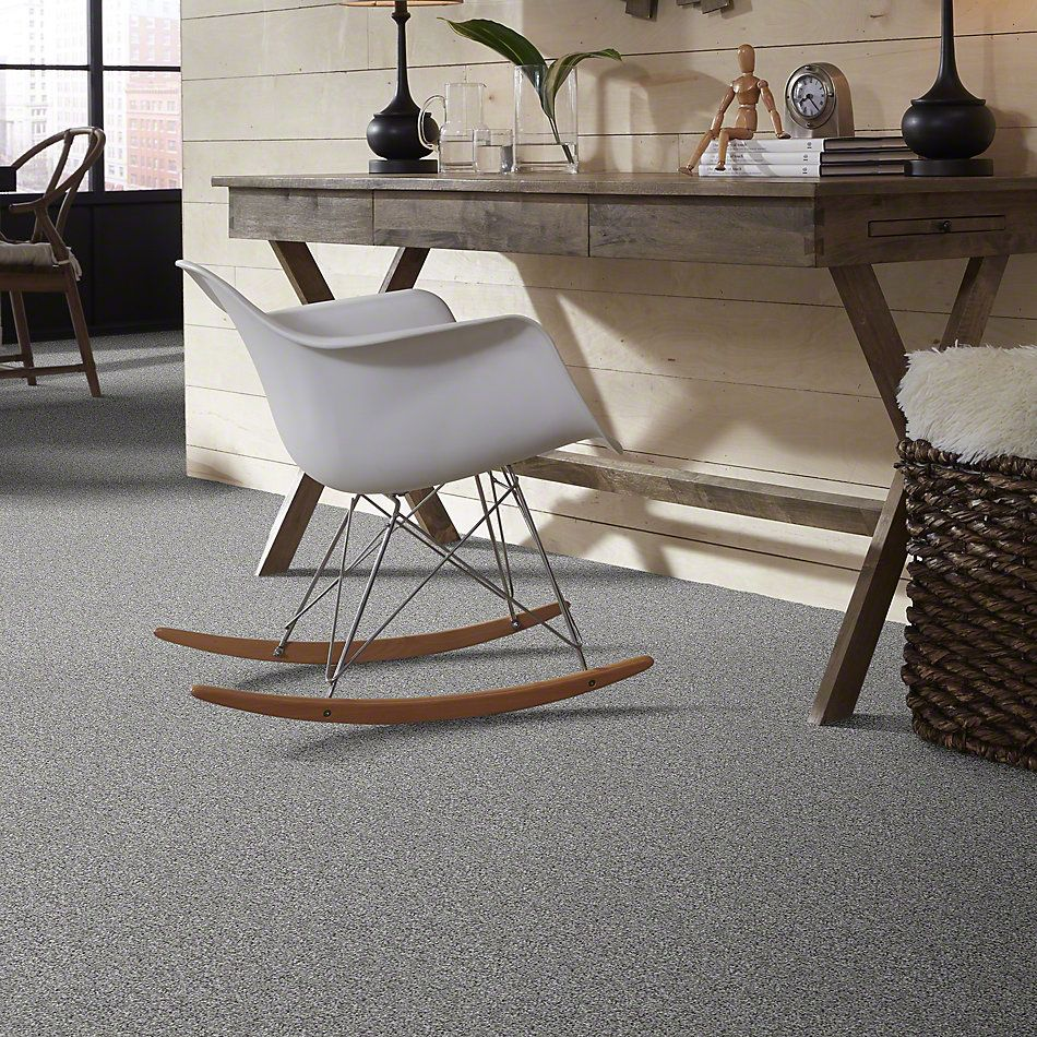 Shaw Floors Value Collections Inspire Me (t) Net Winter Mint 00300_E0846