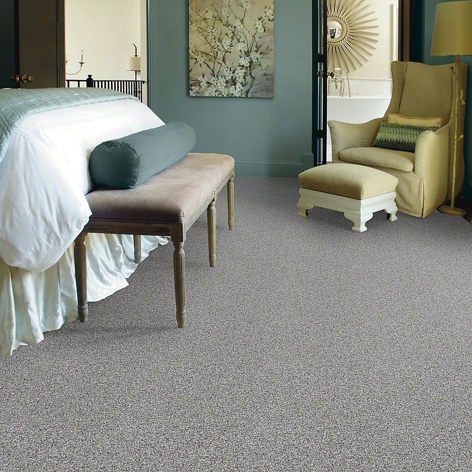 Shaw Floors Value Collections Travel With Me (t) Net Winter Mint 00300_E0903