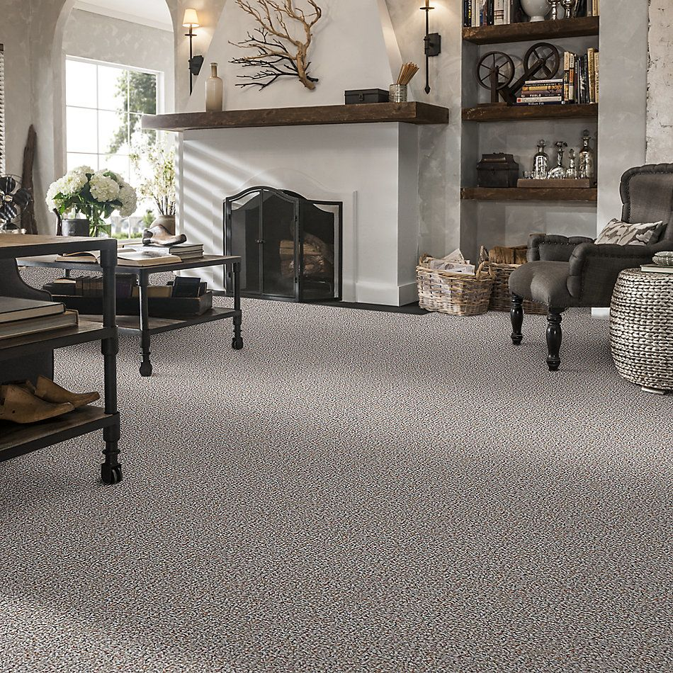 Shaw Floors Value Collections Pure Waters 15′ Net Tweed 00300_E9280