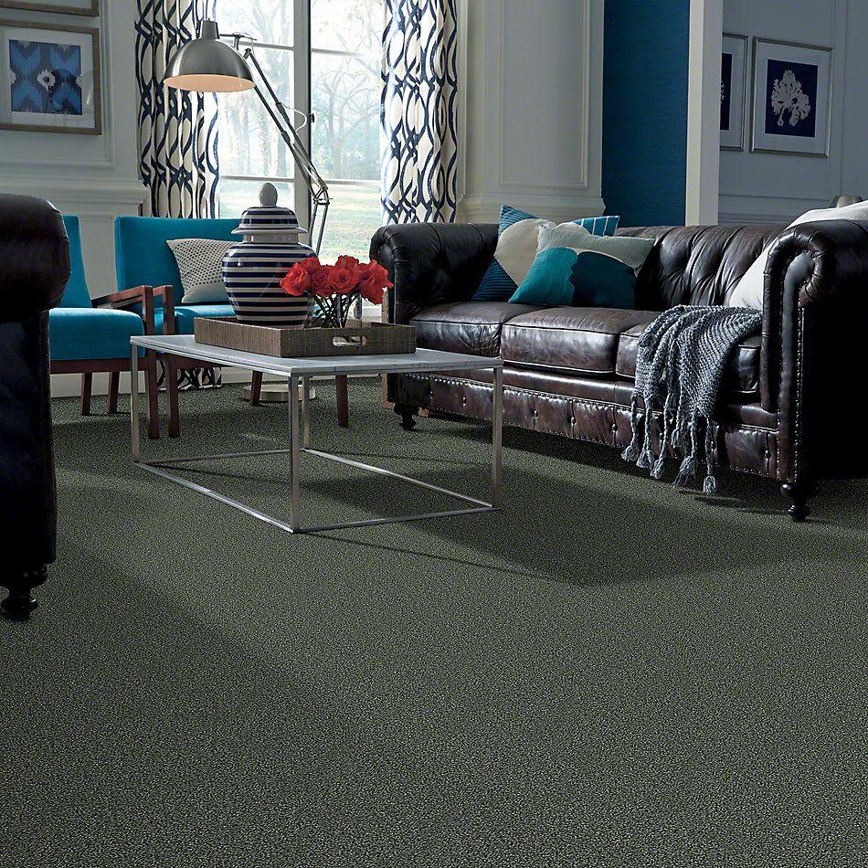 Shaw Floors Foundations Palette Lush 00300_E9359
