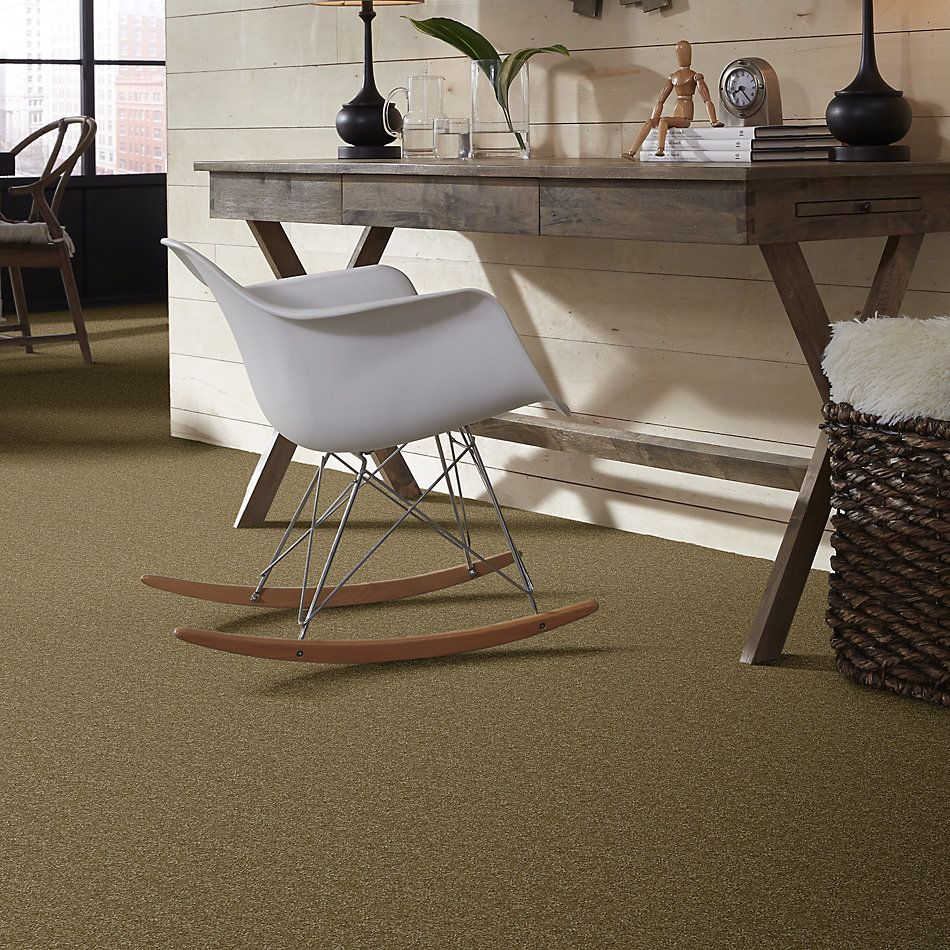 Shaw Floors Value Collections Passageway 3 Net Celery 00300_E9377