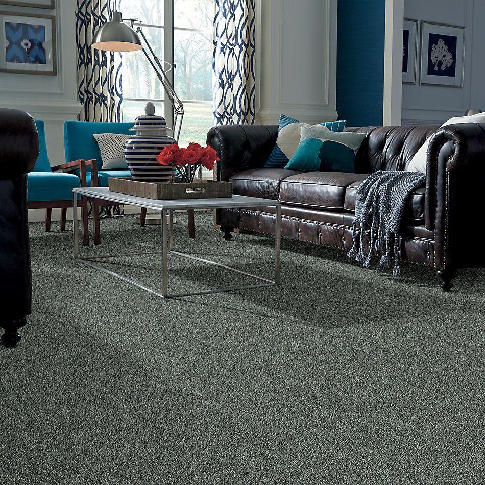 Shaw Floors Bellera Points Of Color II Net Sea Glass 00300_E9786