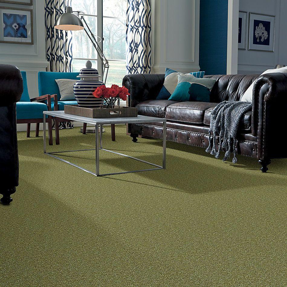 Shaw Floors SFA Ocean Pines 15′ Spring Valley 00300_EA059