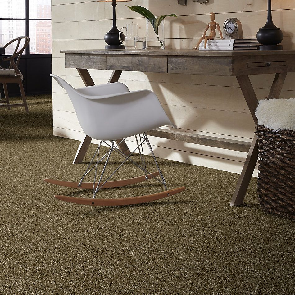 Shaw Floors Energize New Growth 00300_Q3884