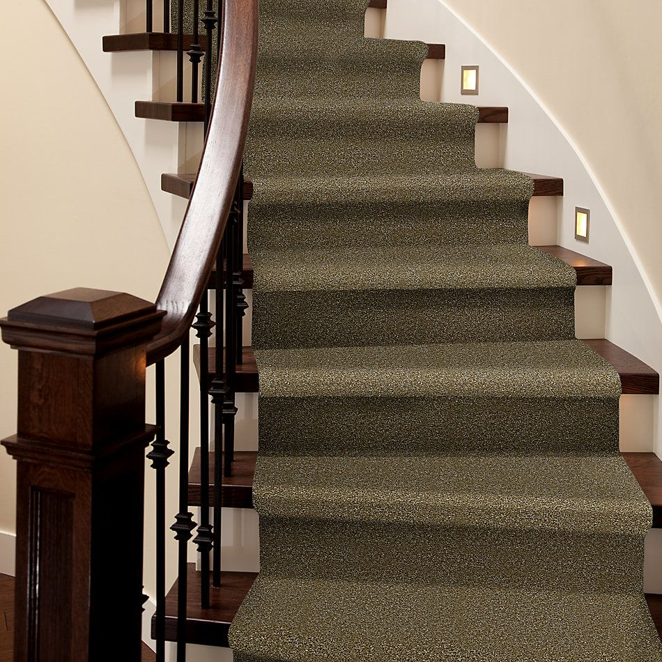 Shaw Floors SFA Hayward New Growth 00300_Q3898