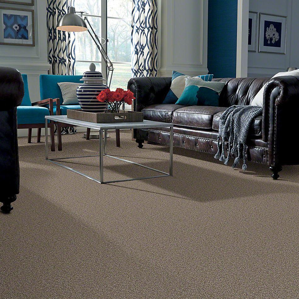 Shaw Floors SFA Garden Lake River Rock 00300_Q4208
