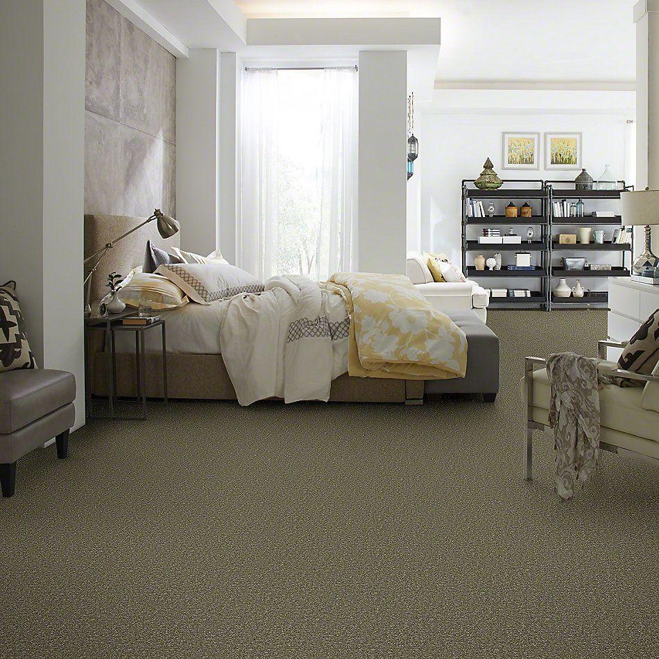 Shaw Floors Queen Point Guard 12′ Aloe 00300_Q4855