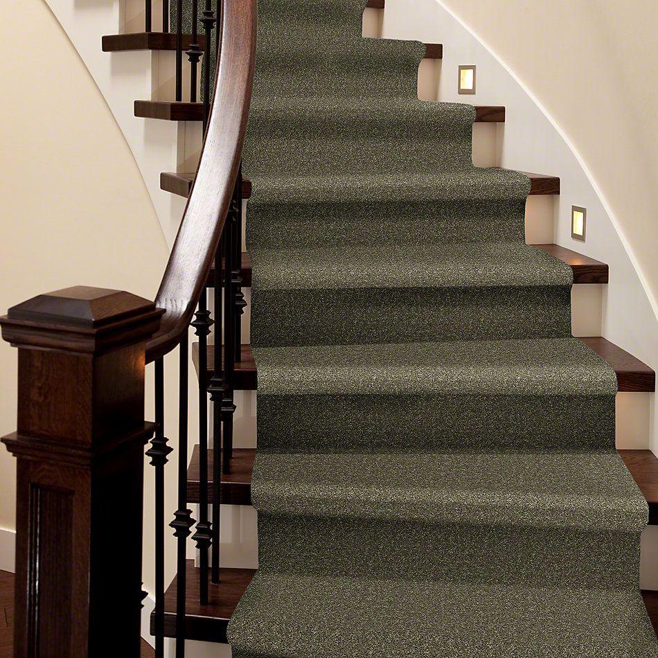 Shaw Floors Queen Point Guard 15′ Aloe 00300_Q4885