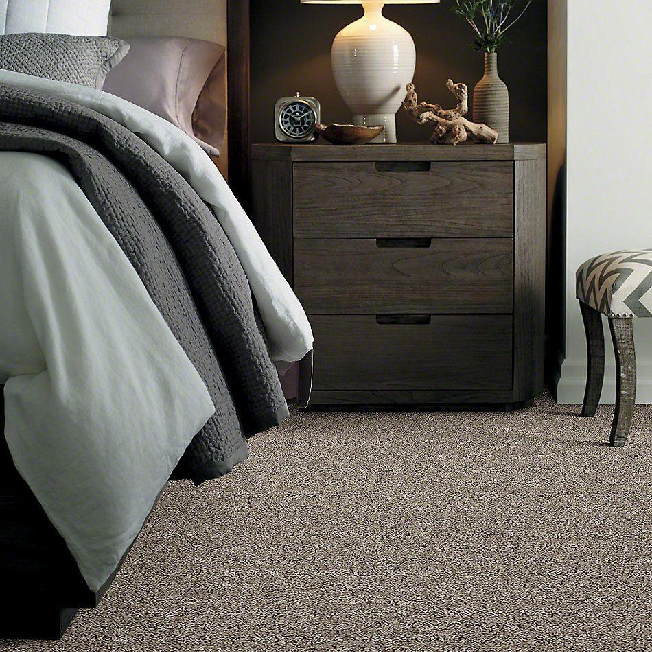 Shaw Floors Shaw Design Center Summer Dreams (s) River Moss 00300_QC438