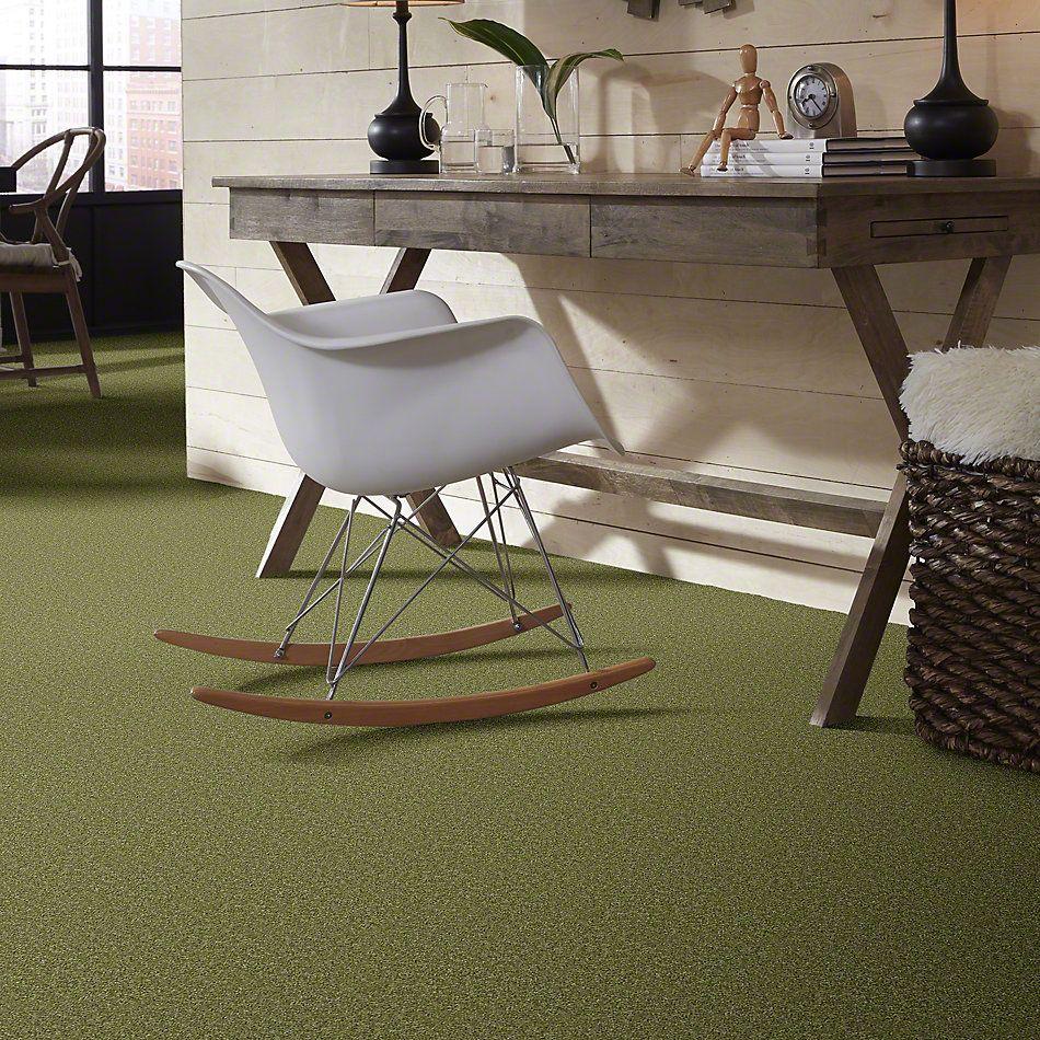 Shaw Floors Roll Special Xv463 Spring Valley 00300_XV463