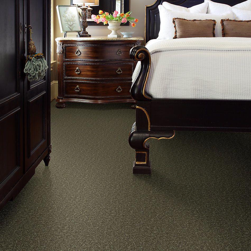 Shaw Floors Roll Special Xv866 Aloe 00300_XV866