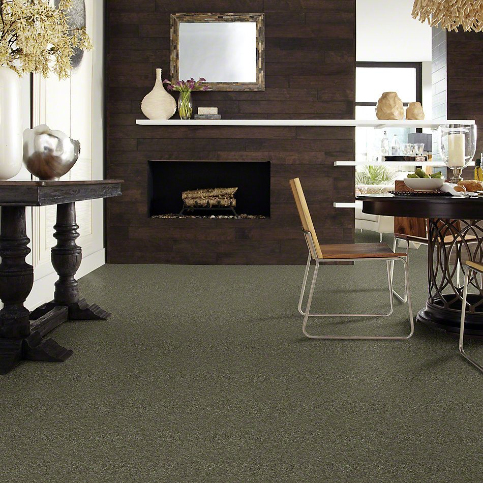 Shaw Floors SFA Vivid Colors I Olive Yard 00301_0C160