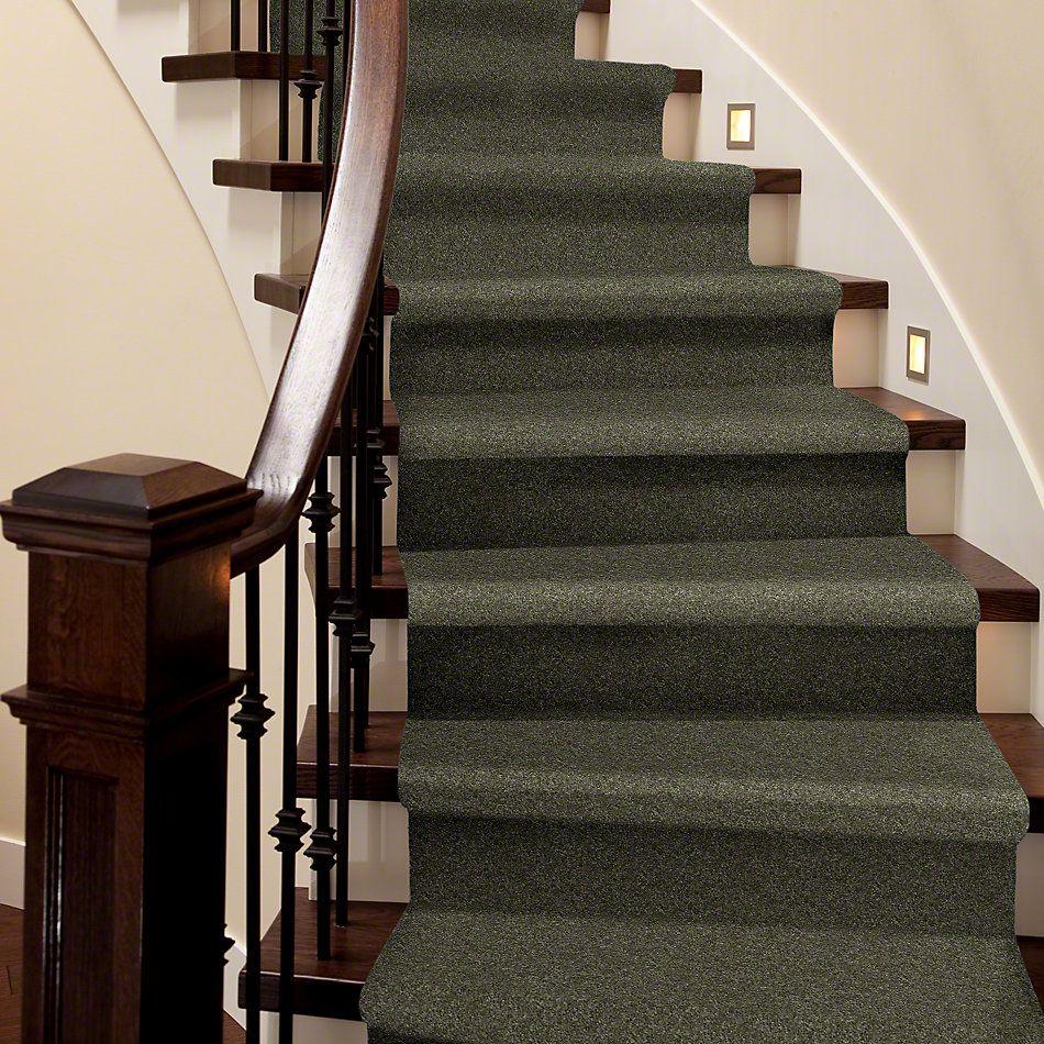 Shaw Floors SFA Vivid Colors III Olive Yard 00301_0C162