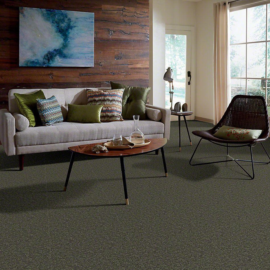 Shaw Floors Full Court 15′ Garden Grove 00301_52Y82