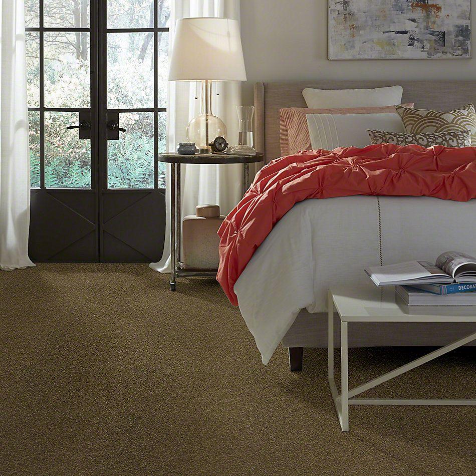 Shaw Floors Enduring Comfort II Summerhouse 00301_E0342